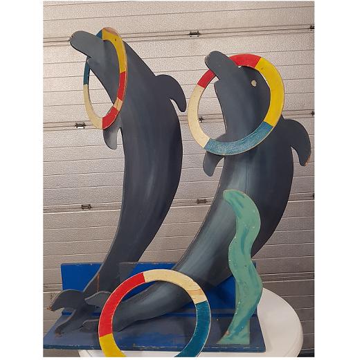 dolfijn 5 ringen vangen